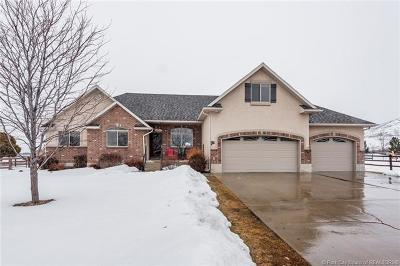 Heber City Single Family Home For Sale: 3035 S Big Hollow
