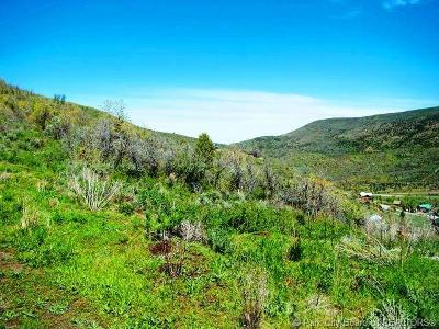 Heber City Residential Lots & Land For Sale: 1582 Ridge Line Drive