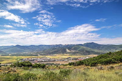 Park City Residential Lots & Land For Sale: 1233 Snow Berry Street