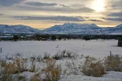 Heber City Residential Lots & Land For Sale: 2426 E Copper Belt Way Lot 720