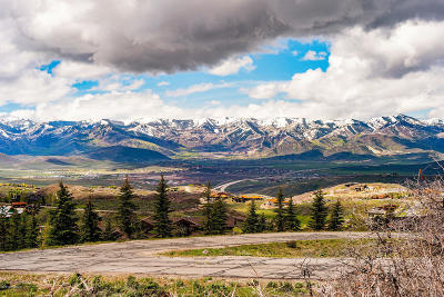 Park City Residential Lots & Land For Sale: 9246 Promontory Summit Drive