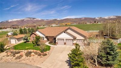 Francis UT Single Family Home For Sale: $587,500