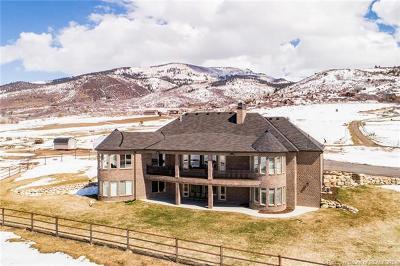 Kamas And Marion Area Single Family Home For Sale: 1009 Farmer Lane