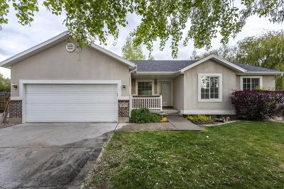Heber City Single Family Home For Sale: 204 N Millbrook