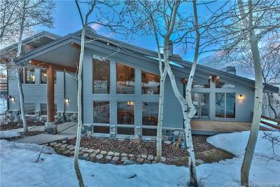 Single Family Home For Sale: 2523 Aspen Springs Drive