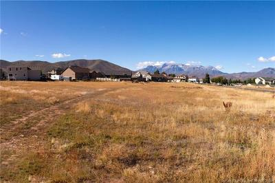 Heber City Residential Lots & Land For Sale: Hwy 40 East Airport Road