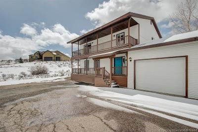 Single Family Home For Sale: 908 Silver Sage Drive