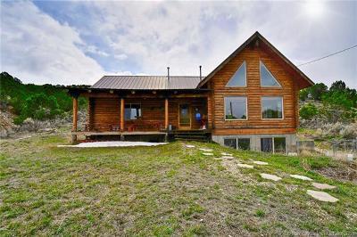 Coalville UT Single Family Home For Sale: $600,000