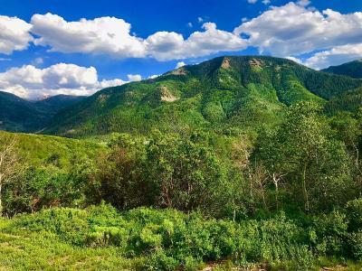 Oakley, Peoa Residential Lots & Land For Sale: 110 N Sunrise Ridge