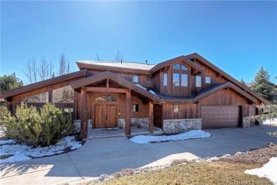 Park Meadows Single Family Home For Sale: 2897 American Saddler