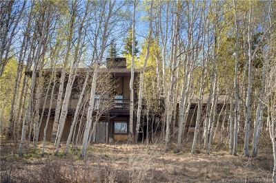Oakley, Peoa Single Family Home For Sale: 4498 Weber Canyon Rd