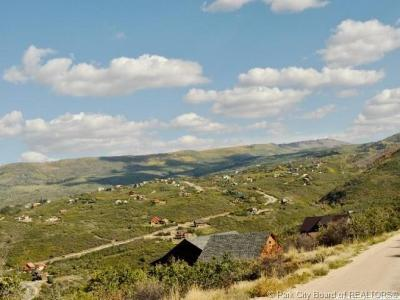 Heber City Residential Lots & Land For Sale: 1972 Ridge Line Drive