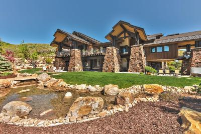 Park City Single Family Home For Sale: 9356 N Red Hawk Trail