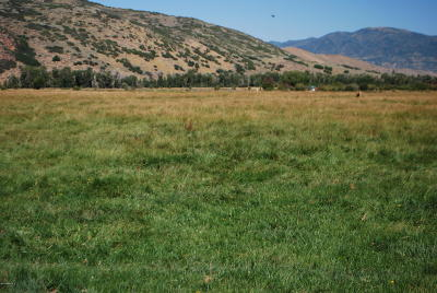 Oakley, Peoa Residential Lots & Land For Sale: 3144 W 5000 North