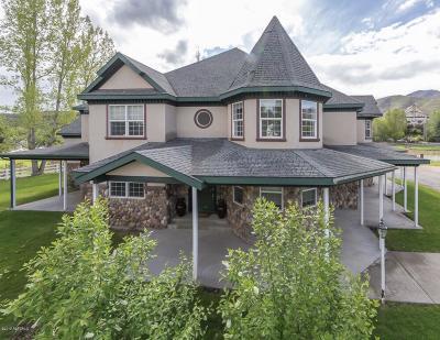 Single Family Home For Sale: 455 W Sharon Lane