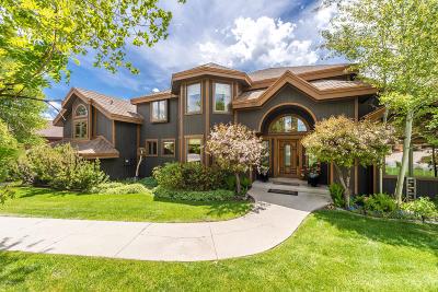 Park City Single Family Home For Sale: 3130 American Saddler Drive
