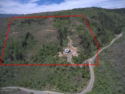 Park City Single Family Home For Sale: 1125 Tollgate Road