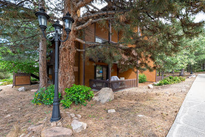 Park City Single Family Home For Sale: 2025 Canyons Resort Drive #V2