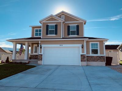 Heber City Single Family Home For Sale: 955 S 960 E