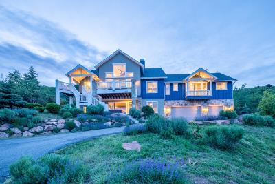 Park City Single Family Home For Sale: 8931 Northcove Drive