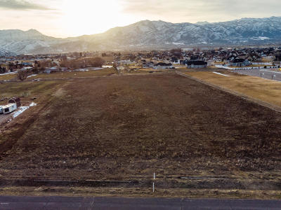 Heber City Residential Lots & Land For Sale: 2580 S Ranch Drive