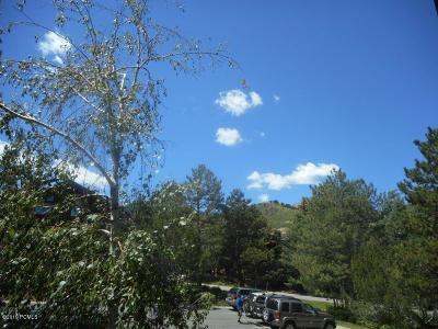 Park City Condo/Townhouse For Sale: 2025 Canyons Resort Drive #T7