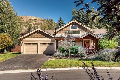 Park Meadows Single Family Home For Sale: 2203 Sunset Court