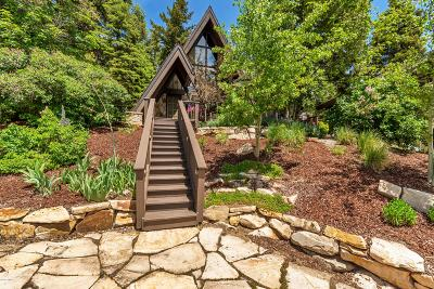 Park City Single Family Home For Sale: 245 Woodland Drive