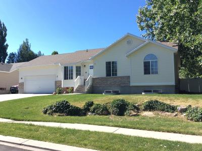 Heber City Single Family Home For Sale: 1042 E 110 N