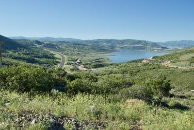 Heber City Residential Lots & Land For Sale: 13661 N Deer Canyon Drive