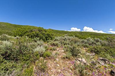 Heber City Residential Lots & Land For Sale: 11624 N White Tail Court
