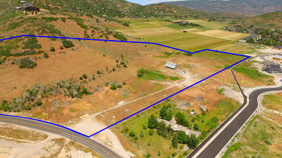 Residential Lots & Land For Sale: 1440 N Pine Canyon Road