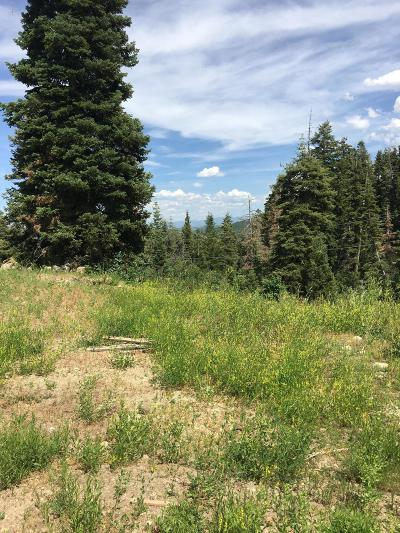 Park City Residential Lots & Land For Sale: 221 Parkview Drive