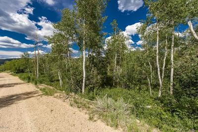 Heber City Residential Lots & Land For Sale: 2737 S Deer Run