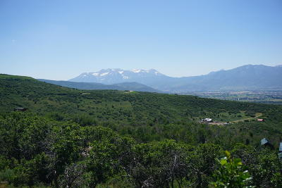 Heber City Residential Lots & Land For Sale: 1853 S Westview Drive