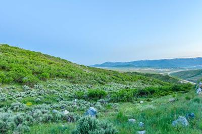 Park City Residential Lots & Land For Sale: 2380 E Canyon Gate