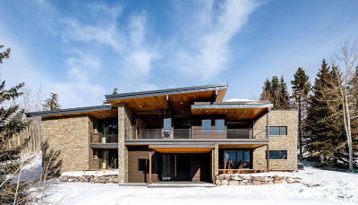 Single Family Home For Sale: 3349 American Saddler Drive