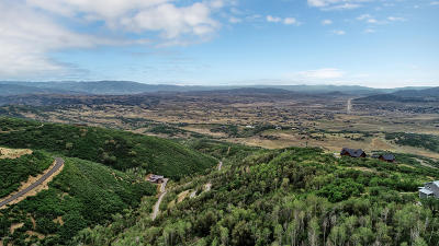 Park City Residential Lots & Land For Sale: 9895 N Kimball Canyon Road