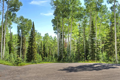 Park City Residential Lots & Land For Sale: 128 White Pine Canyon Road