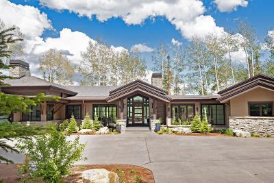 Single Family Home For Sale: 199 White Pine Canyon Road