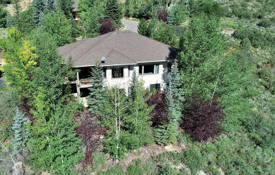 Park City Single Family Home For Sale: 1970 Kidd Circle