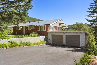 Park City Single Family Home For Sale: 125 Parkview Drive