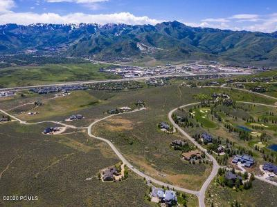 Park City Residential Lots & Land For Sale: 600 Mountain Holly Road