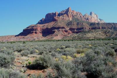 Springdale Residential Lots & Land For Sale: 2530 Anasazi Way