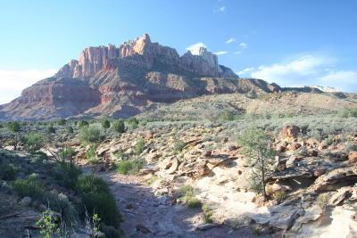 Springdale Residential Lots & Land For Sale: 2495 Navajo Cir