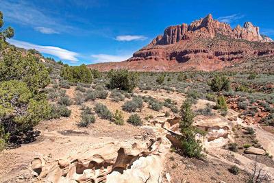 Springdale Residential Lots & Land For Sale: 2538 Anasazi Way