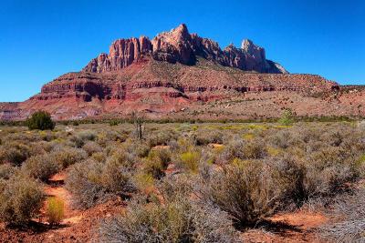 Springdale Residential Lots & Land For Sale: 2533 Anasazi Way