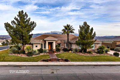 Stone Cliff Single Family Home For Sale: 2473 E Cobalt Dr