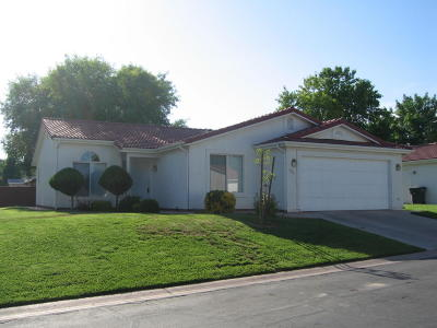 Ivins Single Family Home For Sale: 466 S Fiesta Dr