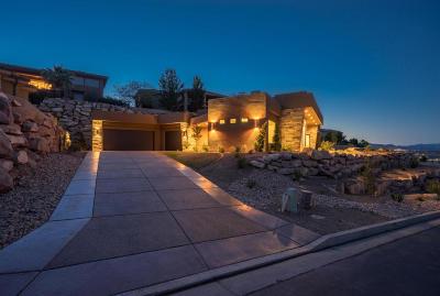 Stone Cliff Single Family Home For Sale: 1662 S Quartz Dr